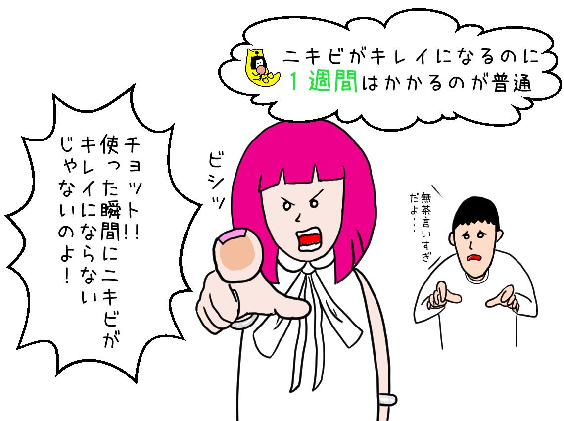 nikibi_top008